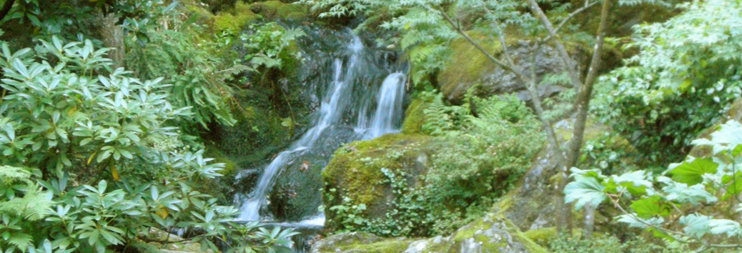 Waterfall - Carolyn Heppner Counselling
